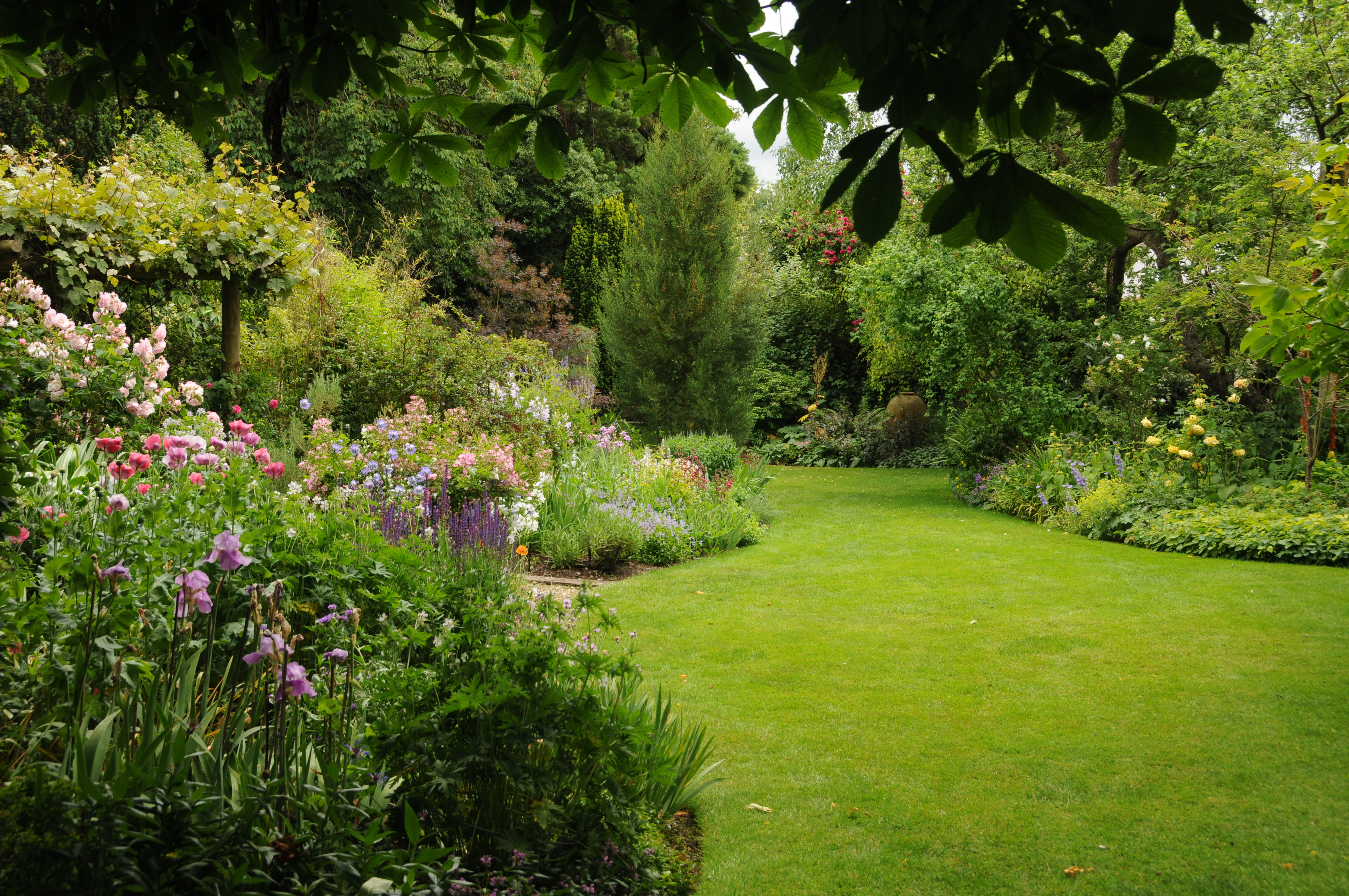 gardenlawn.jpg